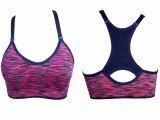 ขาย ซื้อ Anda Zcret Fashion Sport Bra สปอร์ตบราแฟชั่น สีชมพู