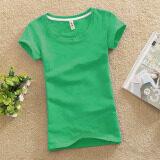 สีทึบหญิงผอม Bottoming เสื้อใหม่เสื้อ ผลไม้สีเขียว Unbranded Generic ถูก ใน ฮ่องกง