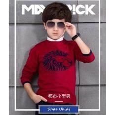 เสื้อกันหนาวคอตต้อนผ้ายืดสำหรับเด็กชาย Boys Double Thick Cotton Knit Sweater - Red
