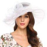 ซื้อ ราคาโปรโมชั่น Sunweb ใหม่สไตล์วินเทจ Organza ฤดูร้อนหมวกปีกกว้างหมวกโบว์งานแต่งงาน สีขาว Unbranded Generic ออนไลน์