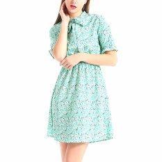 Floral Print Chiffon Dress Women Casual Summer Dress V Neck Beach Dresses Short Sleeve Intl ใน จีน