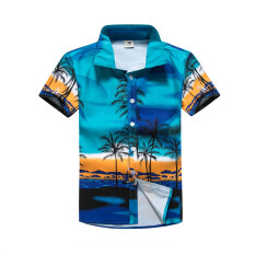 ส่วนลด เสื้อเชิ้ตผู้ชาย ลายดอกไม้สำหรับใส่ท่องเที่ยวฤดูร้อน 30 ทะเลมะพร้าวสีฟ้า 30 ทะเลมะพร้าวสีฟ้า Other ฮ่องกง