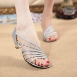 ราคา Ocean New Fashion Women Heeled Sandals Low Heel Solid Color Round Leisure Mom Shoes Silver Intl เป็นต้นฉบับ