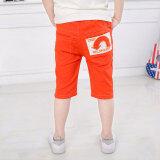 ซื้อ Bo Yu Ming Tong กางเกงลำลองผ้าฝ้ายเจ็ดส่วน สำหรับเด็กชาย สีส้ม ถูก ใน ฮ่องกง