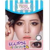 ซื้อ Protrend Color คอนแทคเลนส์ รุ่น Eclipse Gray