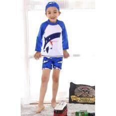 ซื้อ ชุดว่ายน้ำเด็กผู้ชาย แขนยาว พร้อมหมวก ลาย ฉลาม สีขาว ฟ้า ไซต์ S Xxl 3707 ออนไลน์ ถูก