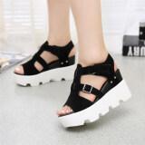 ราคา Summer Style 2016 Platform Sandals Shoes Women High Heel Casual Shoes Open Toe Platform Gladiator Trifle Sandals Women Shoes Black Unbranded Generic เป็นต้นฉบับ