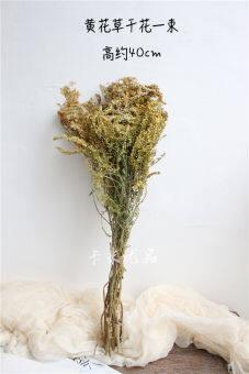 ธรรมชาติแห้งโดยอากาศดอกไม้ชนิดsolidagodecurenslour. ดอกไม้แห้ง黄花草วรรณกรรมสด Snnei การตกแต่งสโมสรบาร์ Asian Creative Luxury Art Works ถ่ายรูปอุปกรณ์