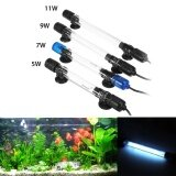 ขาย 11W Submersible Uv Light Sterilizer Lamp For Aquarium Disinfect Fish Tank Intl ถูก จีน