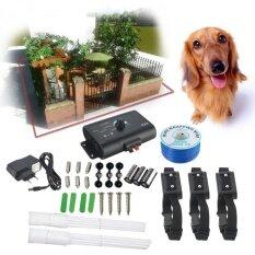 โปรโมชั่น 3 Dog In Ground Outdoor Shock Collar Dog Training Pet Electric Fence Underground Eu Plug Intl ถูก