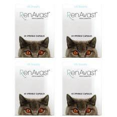 ขาย 4 กล่อง Renavast Cat รวม 240 แคปซูล อาหารเสริม บำรุงไตแมว แมวป่วยโรคไต ไตเสื่อม ค่าไตขึ้น บำรุงระดับเซลล์ Exp 05 2020 ส่งฟรี Kerry Renavast เป็นต้นฉบับ