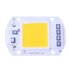 ขาย 50W Leds Floodlights Cob Chip 220V Input Integrated Smart Ic Driver Off White Intl เป็นต้นฉบับ