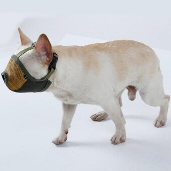 ปากจมูกยาวปรับได้สัตว์เลี้ยงสุนัขปากฝาครอบ Muckles ป้องกัน-biting Barking สบายอำพราง เอ็ม ขนาดคอ: 28-48 เซนติเมตร (สีเขียว)-สนามบินนานาชาติ