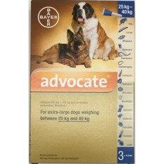 Advocate for extra-large dogs 25 - 40kg ยาหยอดกำจัด เห็บ หมัด พยาธิ หนอนหัวใจ สำหรับสุนัข 1 กล่อง บรรจุ 3 หลอด