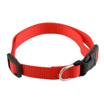 Aukey Store High Quality Products New Durable Adjustable Soft Nylon Pet Puppy Cat Dog Collar with Buckle Lead S - intl