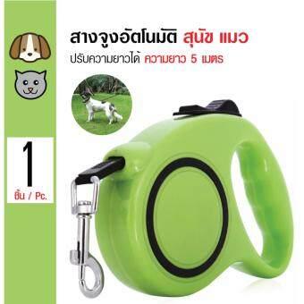 Automatic Leash สายจูงอัตโนมัติ ปรับความยาวได้ สำหรับสุนัขและแมว Size M ความยาว 5 เมตร (รับน้ำหนักได้สูงสุด 14 กิโลกรัม)