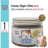ทบทวน Bok Bok Catnip ขนมแมว หญ้าแคทนิป กัญชาแมว เพื่อความเพลิดเพลิน ผ่อนคลาย สำหรับแมว ขนาด 30 กรัม