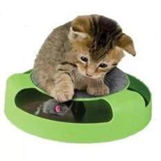 ซื้อ Catch The Mouse ของเล่นแมวไล่จับหนู สีเขียว รุ่น Cat Toy 001 ถูก ใน กรุงเทพมหานคร
