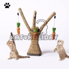 ราคา Catholiday สวนแครอท ของเล่นแมว ที่ลับเล็บแมว ที่ฝนเล็บแมว ใหม่ล่าสุด