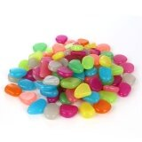 ขาย Catwalk 100Pcs Glow In The Dark Stones Pebbles Rock Fish Tank Aquarium Garden Walkway Intl ถูก