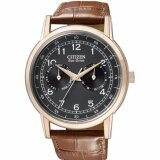 ซื้อ Citizen Eco Drive Men S Watch Brown Leather Strap Ao9003 08E Intl ถูก ฮ่องกง