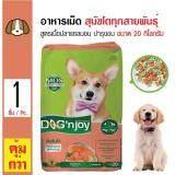 ทบทวน Dog N Joy อาหารเม็ดสุนัข สูตรเนื้อปลาแซลมอน บำรุงผิวหนังและขน สำหรับสุนัขโต 1 ปีขึ้นไป ขนาด 20 กิโลกรัม Dog N Joy