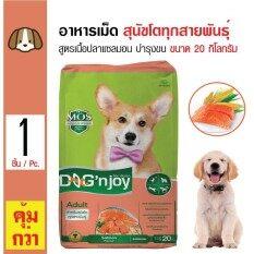 ราคา Dog N Joy อาหารเม็ดสุนัข สูตรเนื้อปลาแซลมอน บำรุงผิวหนังและขน สำหรับสุนัขโตทุกสายพันธุ์ ขนาด 20 กิโลกรัม ใหม่ ถูก