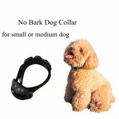 ราคา Dog Stop Barking Collar Dog No Barking Anti Bark Control Collar Pet Training Device Intl Unbranded Generic จีน