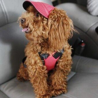 ชุดว่ายน้ำหมวกเบสบอลฤดูร้อนสุนัขผ้าใบสุนัขขนาดเล็กหมวกสุนัขหมวกกันน็อกกลางแจ้งเอส-นานาชาติ