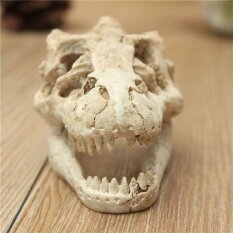 ส่วนลด Halloween Aquarium Decorative Resin Skull Crawler Dragon Lizards Decoration Intl Unbranded Generic