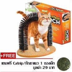 ขาย Lovbag Purrfect Arch ซุ้มแปรงนวดแมว ซุ้มแปรงถูหลังแมว ของเล่นแมว ที่นวดตัวแมว ที่ดักขนแมว Lov