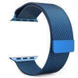 ซื้อ วงจรแม่เหล็กชุบนาฬิกาแหวนรัดสเตนเลสสำหรับนาฬิกา 42มม สีน้ำเงิน ออนไลน์ ถูก