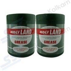 ราคา Molyland จารบีทนความร้อน S2 1ปอนด์ 2 ชิ้น เป็นต้นฉบับ Molyland