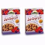 ขาย ซื้อ มุสลีอาหารเช้าผสมผลไม้ Muesli Wild Berry นำเข้าจากอิตาลี 2 กล่อง 375กรัมต่อกล่อง