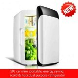 ราคา New Mini Mini Fridge Dormitory Small Family Home Car Dual Use 10L Large Capacity Cold Hot Dual Purpose Refrigerator Intl ออนไลน์