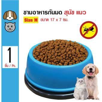 No Ant Bowl ชามอาหารกันมด ชามน้ำ กันมดขึ้นบนอาหาร สำหรับสุนัขและแมว Size M ขนาด 17x7 ซม. (สีฟ้า)