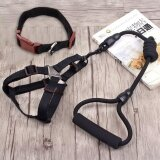 ขาย Ocean New 3Pcs Pet Supplies Harnesses Traction Collar Chest And Back Traction Rope Dog Chain Dog Rope Chest Straps Black 6×120Cm Intl ออนไลน์