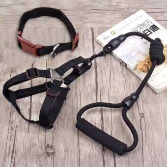 Ocean New 3PCS Pet supplies Harnesses Traction collar Chest and back traction rope Dog chain Dog rope Chest straps(Black)1×120cm - intl