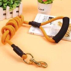 โปรโมชั่น Outdoor Long Pet Dog Leash Climbing Rope With Copper Hook Thicker Lead Pet Dog Large Rope Training Yellow 1 2X300Cm Intl จีน