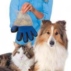Paragon อุปกรณ์แปรงขนสัตว์เลี้ยง หวีขนหมาและขนแมว ถุงมือกรูมมิ่ง อุปกรณ์ทำความสะอาด ตกแต่งขน ที่แปรงขนสุนัข สวมใส่พอดีทั้ง 5 นิ้ว สัมผัสอบอุ่นเหมือนมือจริง Thailand