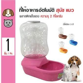 Pet Feeder ที่ให้อาหารพลาสติกอัตโนมัติ ชามอาหาร สำหรับสุนัขและแมว ความจุ 2 กิโลกรัม (สีชมพู)