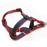 Pet Harness Set Lead Leash Training Walking Belt For Small Medium Puppy Dogs Cats Adjustable Denim Red Xl 2 5 120Cm Intl ใหม่ล่าสุด