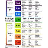 4.5-19 Small Range /& 125 Strips Manufacturer Offer:pH Test Strips Accurately Track /& Monitor Your pH Level Using Saliva and Urine Easily and Quickly Testing Alkaline and Acid Levels