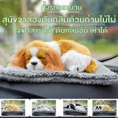 ซื้อ สุนัขจำลอง ดับกลิ่น ด้วยถ่านไม้ไผ่ ร้องได้ ขจัดสารเคมี ดับกลิ่นอับ เหมาะใช้ใน รถยนต์ ที่ทำงาน และ บ้าน สุ่มส่งของ กรุงเทพมหานคร