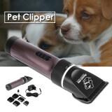 ราคา การดูแลสัตว์เลี้ยงสัตว์แมวมืออาชีพชุดปัตตาเลี่ยนตัดแต่งขนสุนัขมีดโกน Os767 Intl Xcsource ออนไลน์