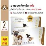 ราคา Revolution ยาหยดป้องกันไร เห็บหมัด พยาธิหนอนหัวใจ สำหรับสุนัขน้ำหนัก 5 10 กิโลกรัม 3 หลอด กล่อง X 2 กล่อง ที่สุด