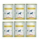 ราคา Royal Canin Cadiac กระป๋อง410G สำหรับสุนัขโรคหัวใจ 6 กระป๋อง ออนไลน์