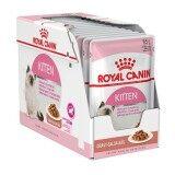 ขาย Royal Canin Kitten Pouch Gravy 12 Pouches โรยัลคานิน อาหารเปียกแบบซอง สำหรับลูกแมวอายุ 4 12เดือน เกรวี่ บรรจุ 12ซอง Royal Canin ผู้ค้าส่ง