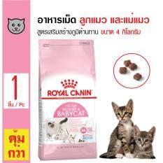 Royal Canin Mother and Baby Cat อาหารลูกแมวและแม่แมว สูตรเสริมสร้างภูมิต้านทาน สำหรับลูกแมวอายุ 2 - 4 เดือน และแม่แมว ขนาด 4 กิโลกรัม