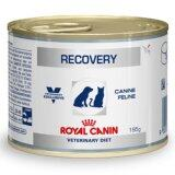 ราคา Royal Canin Recovery อาหารสำหรับสุนัขและแมว พักฟื้น 195G จำนวน 1 กระป๋อง Thailand